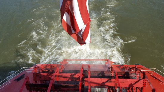Mississippi River: Looking down on our paddlewheel - cool!
