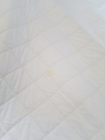 Oskaloosa, IA: Stained Mattress pad on bed 2
