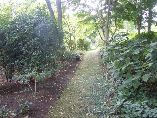 Jardin d\'ombre - Picture of Parc Andre-Citroen, Paris - TripAdvisor