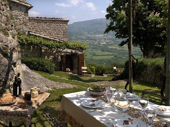 Sant'Agata Feltria, อิตาลี: Pergola. Green spaces of the property.