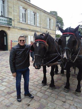Blaye, Francia: .