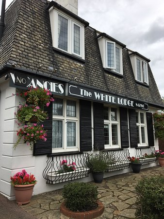 The White Lodge: photo3.jpg