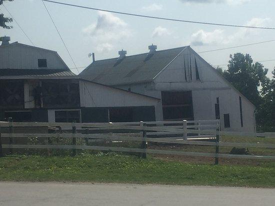 The Amish Experience: photo2.jpg
