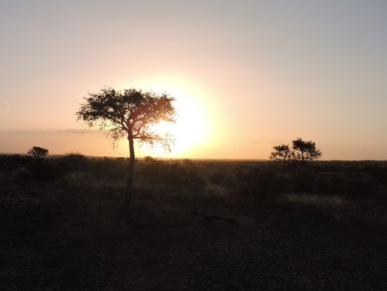 Cheno Travel & Safari Tour: The bush at sundown