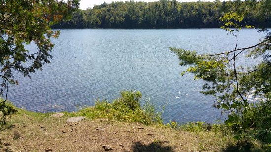 Sharbot Lake, Canadá: waterfront at site 87