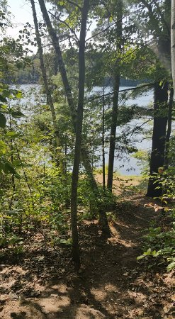 Sharbot Lake, Canadá: down the path from the water to site 87