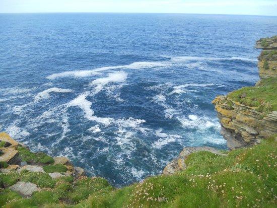 Mainland, UK: dalla scogliera un mare blu cobalto meraviglioso