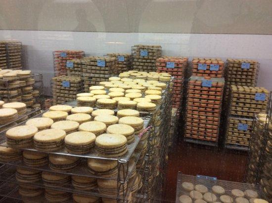 Livarot, France: La cave à fromages
