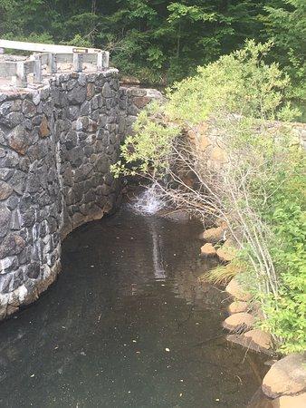 Roaring River Memorial Nature Trail