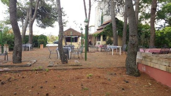 Skrip, โครเอเชีย: giardino