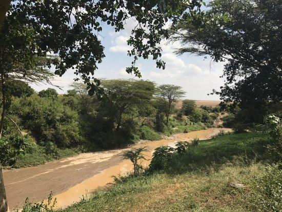 Basecamp Masai Mara: photo3.jpg