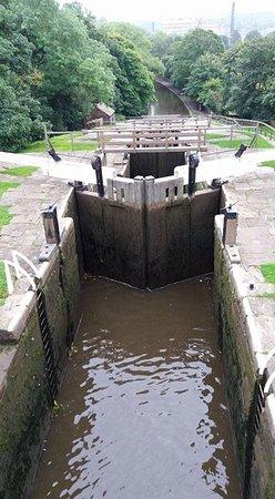 Bingley Five Rise Locks: .top view
