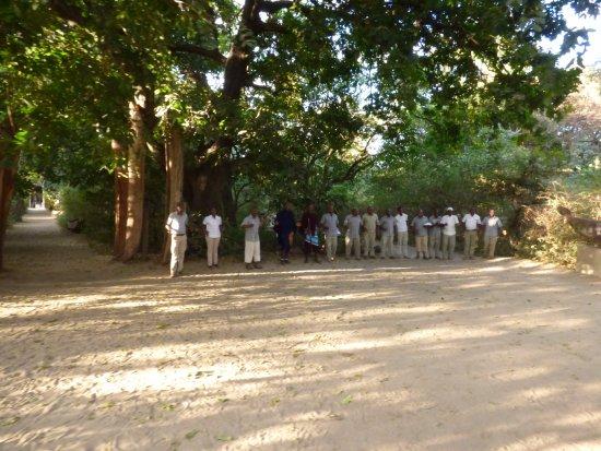 Lake Manyara National Park, Tanzania: Welcome song from the staff