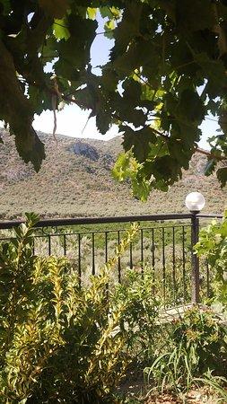 Zdjęcie Natureland Efes Pension