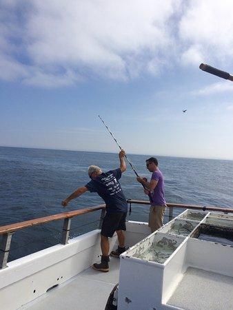 Point loma sportfishing san diego all you need to know for Point loma sport fishing