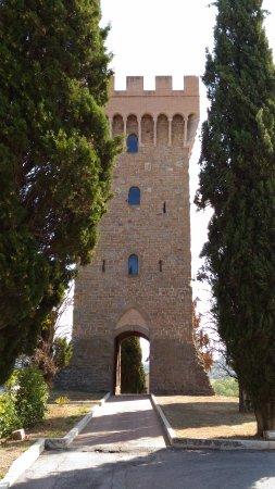 Торджиано, Италия: Torgiano