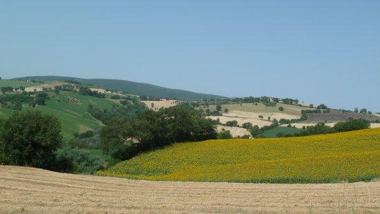 San Severino Marche, Italy: La vista delle colline circostanti
