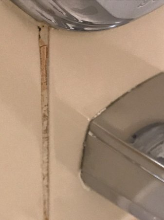 Holiday Inn Express Hotel & Suites Detroit-Utica: Mold in shower.