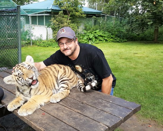 Orono, Canada: petting Shere Khon the young tiger