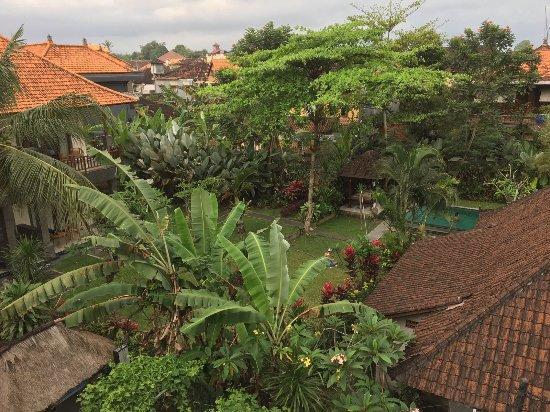 Kori Bali Inn: IMG-20170910-WA0048_large.jpg