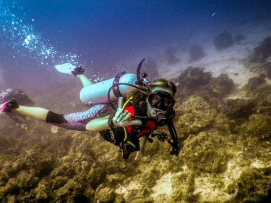 Semporna, มาเลเซีย: Diving!