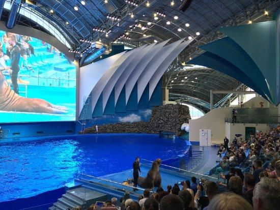 Primorskiy Oceanarium