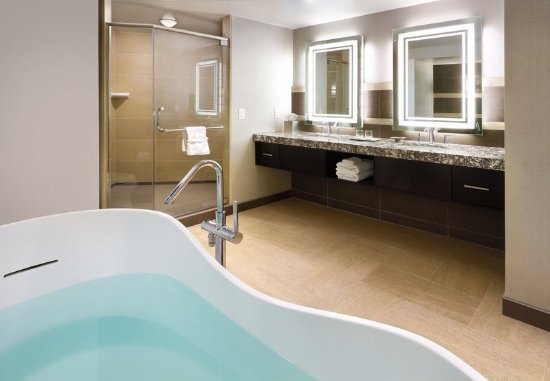 South Sioux City, NE: Presidential Suite - Bathroom