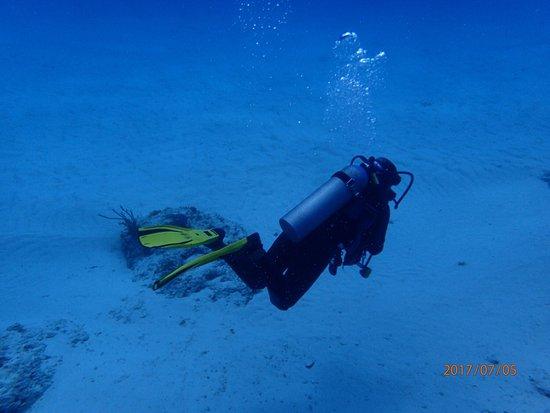 Dive with Cristina : photo6.jpg