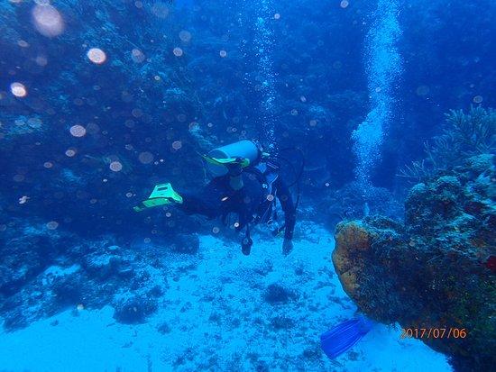 Dive with Cristina : photo8.jpg
