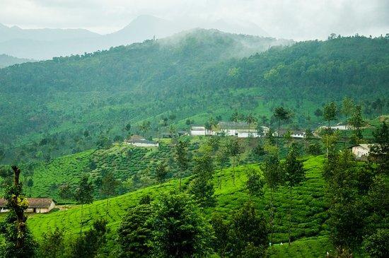 Kalasa, India: View of Gaaligandi village from homestay