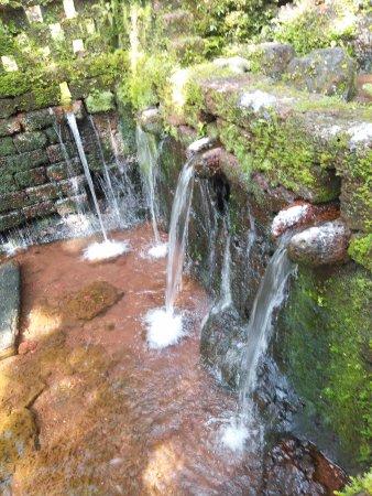 Rivona Springs