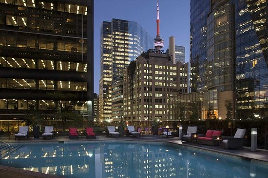 Hilton toronto 2017 prices reviews photos canada hotel tripadvisor for Swimming pools downtown toronto