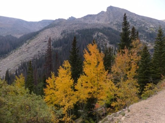 Aspenglen Campground: Aspens already changing