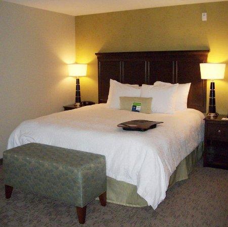 Hampton Inn & Suites Manteca: King Standard Room