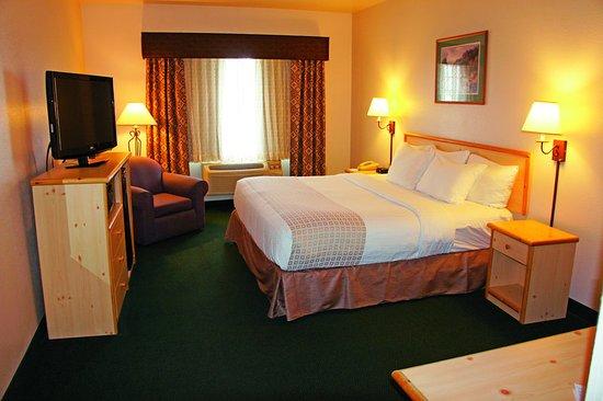 Belgrade, Montana: Guest Room