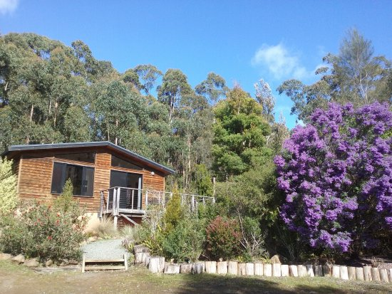 Southern Forest Accommodation: Cottage