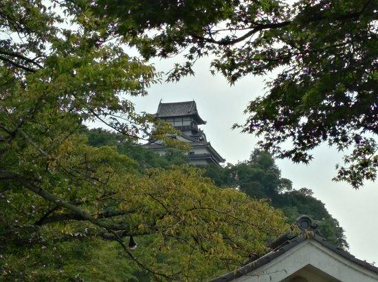 Inuyama Castle : IMG_20170904_144508_large.jpg