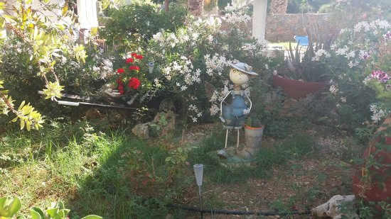 Stavromenos, กรีซ: Сентябрь 2017 г. Сад ухоженный, номера чистые. Все, что нужно есть. Но, не для взыскательных кли