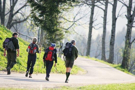 Rabenstein an der Pielach, Austria: Wandern