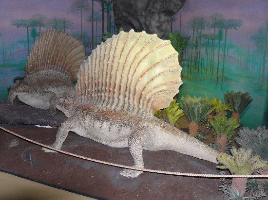 DinoPark Liberec: Spousta realisticky ztvárněných zvířat