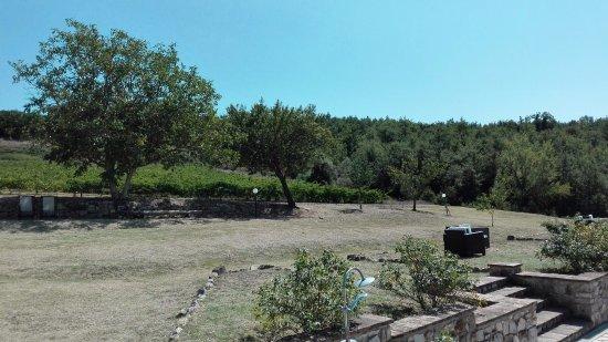 Bilde fra Monte Castello di Vibio