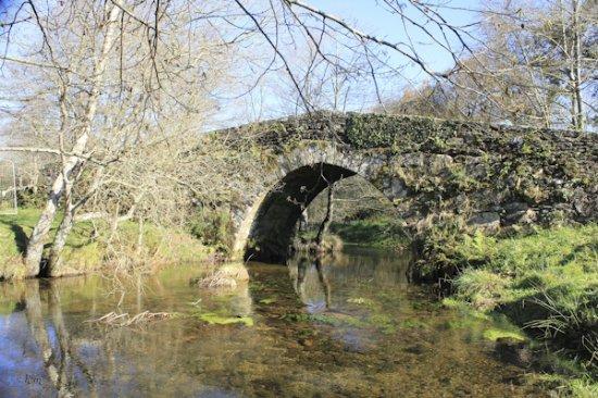 Forcarei, Spain: Ruta de Senderismo Pontes do Lérez VIII