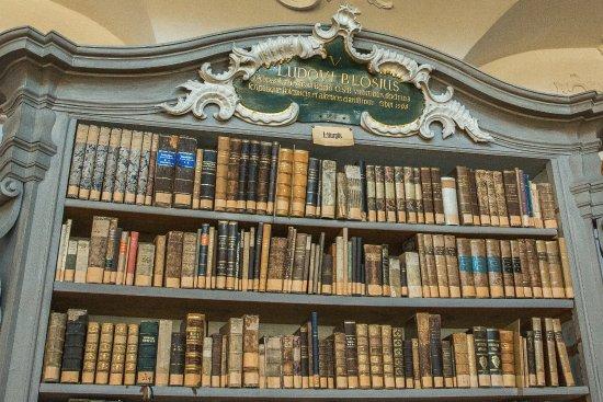 St. Peter auf dem Schwarzwald, Bibliothek: Bibliothèque du Monastère à Sankt Peter, Forêt Noire
