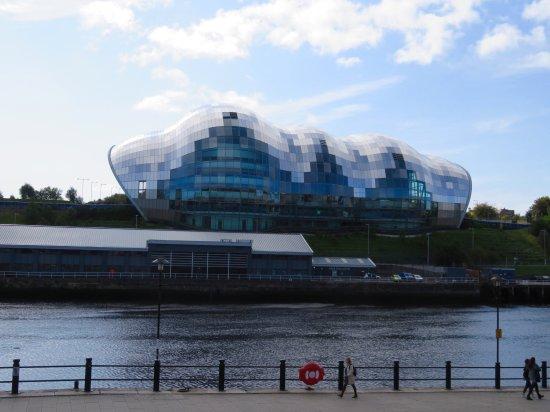 City Sightseeing Newcastle: photo0.jpg