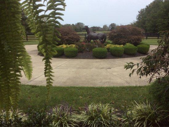 La Grange, Кентукки: photo1.jpg