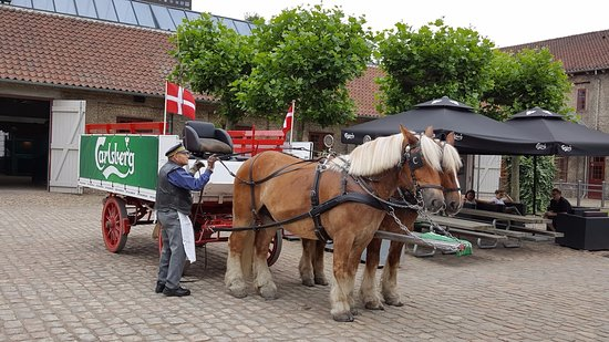 Visit Carlsberg: Free Carlsberg tour with horse-drawn carriage