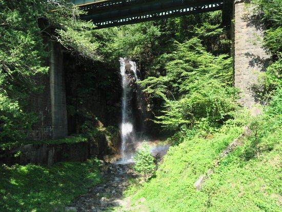 小野の滝, 景色の様子
