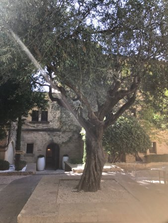 Castillon-du-Gard, Γαλλία: Amazing hotel and some food from our lunch !