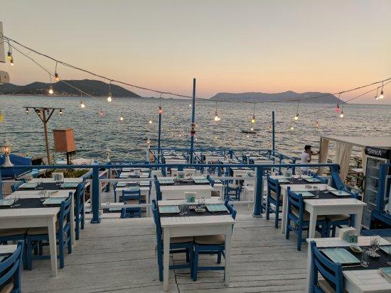 תמונה מSardelaki Greek Tavern