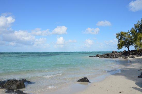 Ile Aux Cerfs: l'île aux cerfs